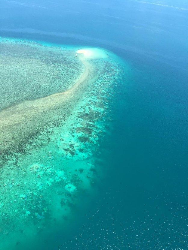 ปะการังฟอกขาว 06.jpg